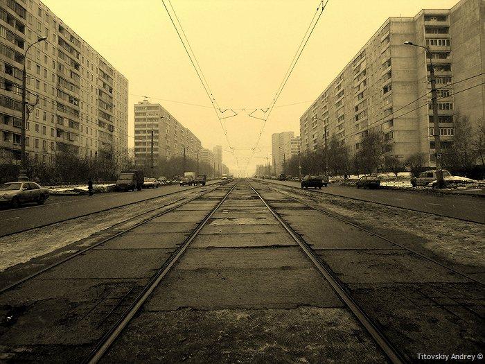 strogino_rayon_001.jpg